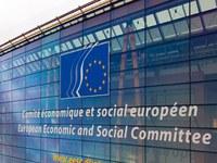 PROGRAMA DE PRÀCTIQUES A LA COMISSIÓ EUROPEA
